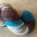 Spun chain-plied gradient (Corgi Hill Farm)