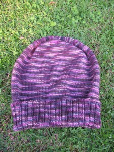 Sockhead Hat (from Socks That Rock, Lightweight)
