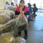 Melanie hauling a fleece